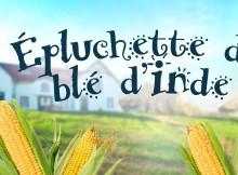 Epluchette-ble-dinde-Manoir-des-trembles_2017