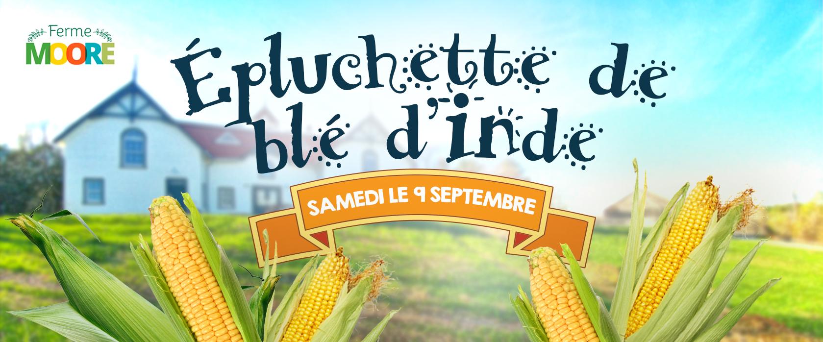Epluchette-ble-dinde-Manoir-des-trembles_2017_2