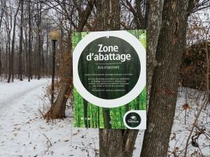 Affiche de l'avis d'abattage d'arbres